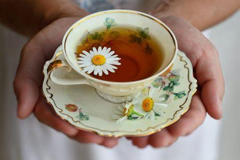 П'ять вагомих причин частіше пити ромашковий чай