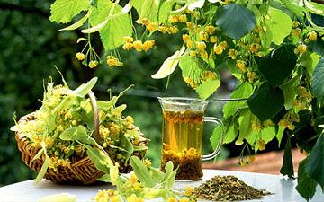 трав'яний напій дозволить очистити судини