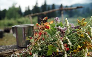 як слід вживати чаї на травах