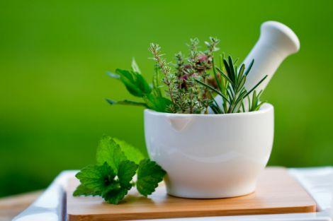 Трави, які лікують харчові розлади