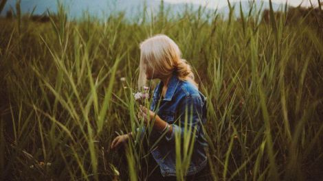 Зміцнення волосся травами