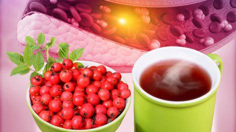 Проти холестерину і для довголіття: розкрита користь простого чаю