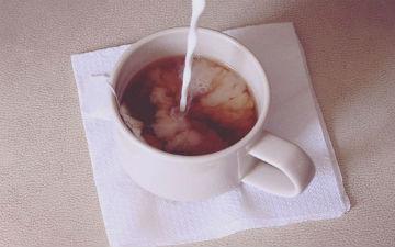 Гарячий шоколад та соєве молоко такі ж корисні, як і вода