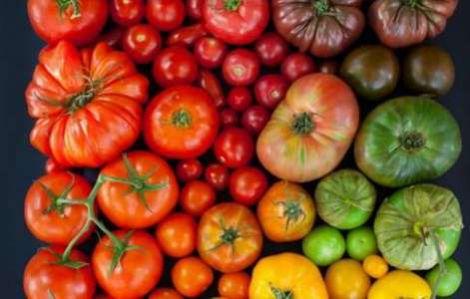 Сезонний овоч, який допоможе зміцнити ваші кістки