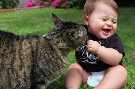 Кіт грається з малюком