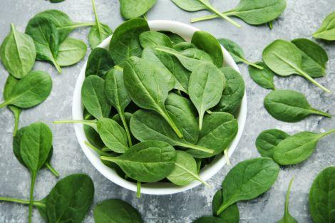 Схуднути допоможе шпинатна дієта