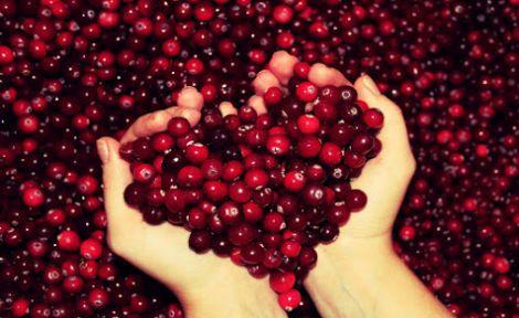 Обирайте саме ягоди
