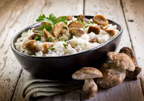 Корисні та смачні гриби