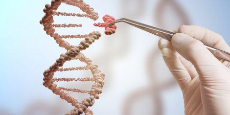 Як ви ставитесь до генетичного редагування?