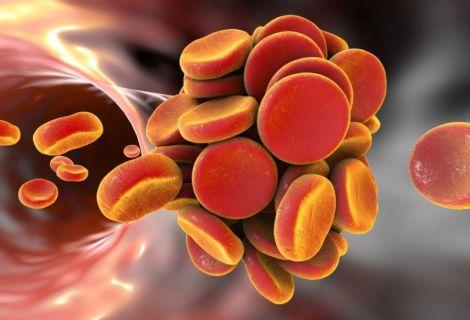Антикоагулянти не шкодять кровоносній судині