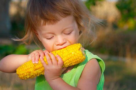 Користь кукурудзи