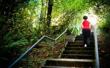 Знаходьте користь і від сходів
