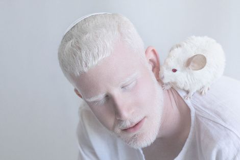 4461_albinos.jpg (13.33 Kb)
