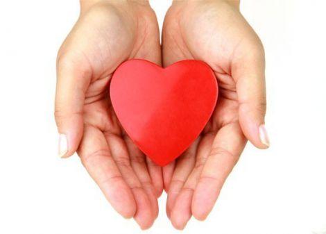 cuore-rosso-tra-le-mani.jpg (14.8 Kb)