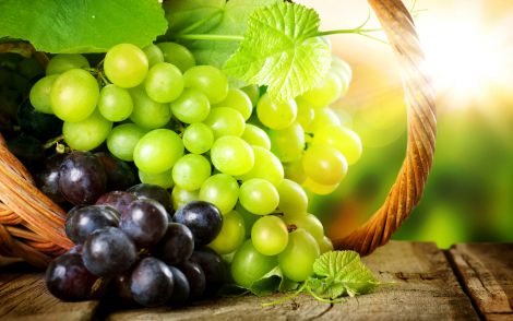 vinograd.jpg (29. Kb)